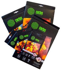 В июне на российском рынке появится профессиональная полуглянцевая и суперглянцевая бумага Cactus
