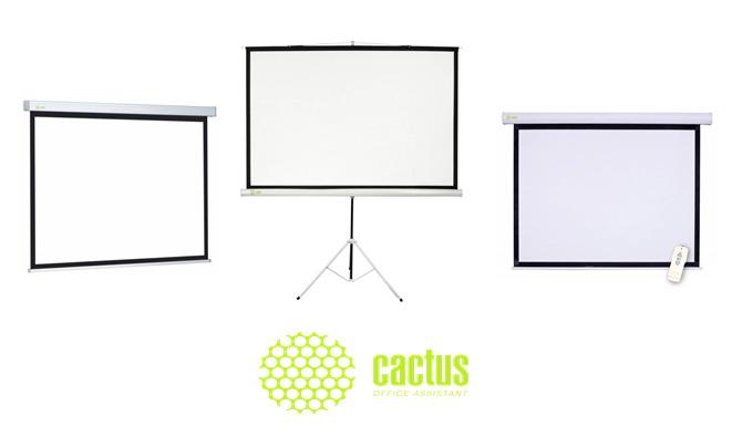 экраны для проекционного оборудования Кактус